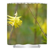 A Yellow Paradise Shower Curtain