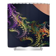 a050 Lace From Lily-of-the-west's Stocking Shower Curtain
