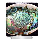 Abalone Seashell Shower Curtain