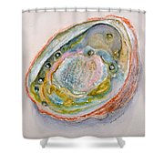 Abalone Study #2 Shower Curtain