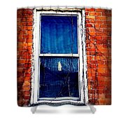 Abandoned House Window With Vines Shower Curtain