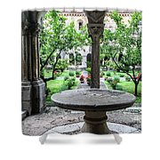 Abbey Cloister Shower Curtain
