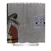 Abbey-normal Shower Curtain