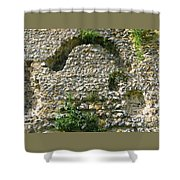 Abbey Ruins Shower Curtain