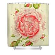 Abbi Rose Shower Curtain