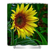 About Face And Stand Tall Shower Curtain