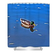 About Love. Diptych. Male. Shower Curtain