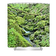 Above Moine Creek 2 Shower Curtain