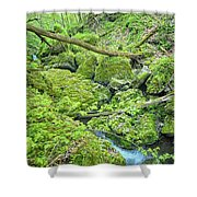 Above Moine Creek Shower Curtain