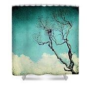 Above The Clouds Shower Curtain