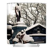 Abraham Lincoln Memorial Scotland Winter Shower Curtain