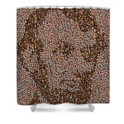 Abraham Lincoln Penny Mosaic Shower Curtain