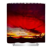 Absorbtion Shower Curtain