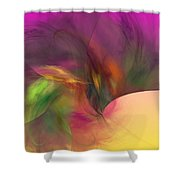 Abstract 030111 Shower Curtain