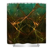 Abstract 031211 Shower Curtain