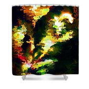 Abstract 032311 Shower Curtain
