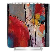 Abstract 050 Shower Curtain