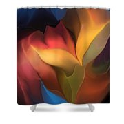 Abstract 051816 Shower Curtain