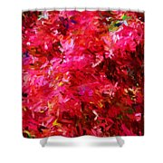 Abstract 052310 Shower Curtain