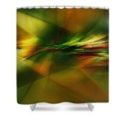 Abstract 060210 Shower Curtain
