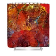 Abstract 081310 Shower Curtain
