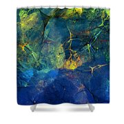 Abstract 081610 Shower Curtain