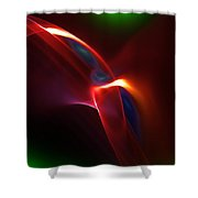 Abstract 082010 Shower Curtain