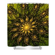 Abstract 090110 Shower Curtain