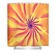 Abstract 090510 Shower Curtain