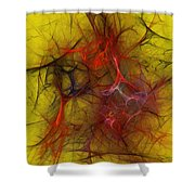 Abstract 103110 Shower Curtain
