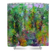 Abstract 111510a Shower Curtain
