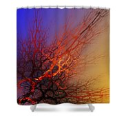 Abstract 112810a Shower Curtain