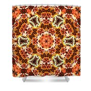 Abstract 120410 Shower Curtain