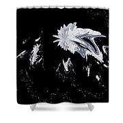 Abstract 385 Shower Curtain