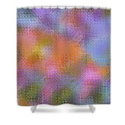 Abstract 405 Shower Curtain