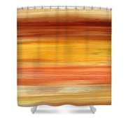 Abstract 425 Shower Curtain