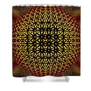 Abstract 442 Shower Curtain