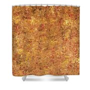 Abstract 527 Shower Curtain