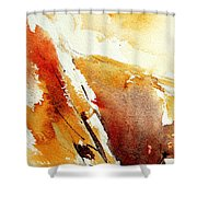 Abstract 5869 Shower Curtain