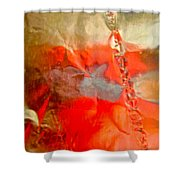 Abstract 6043 Shower Curtain