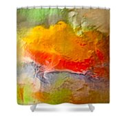 Abstract 6048 Shower Curtain