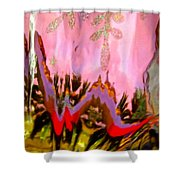 Abstract 6137 Shower Curtain