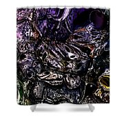 Abstract 63016.4 Shower Curtain