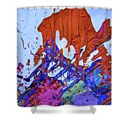 Abstract 6497 Shower Curtain
