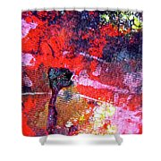 Abstract 6539 Shower Curtain
