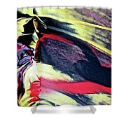 Abstract 6738 Shower Curtain