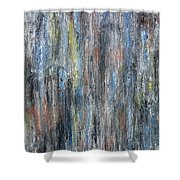 Abstract 726 Shower Curtain