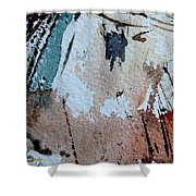 Abstract  9036 Shower Curtain