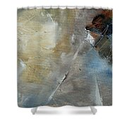 Abstract 904060 Shower Curtain