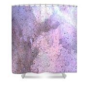 Abstract Abalone One Shower Curtain